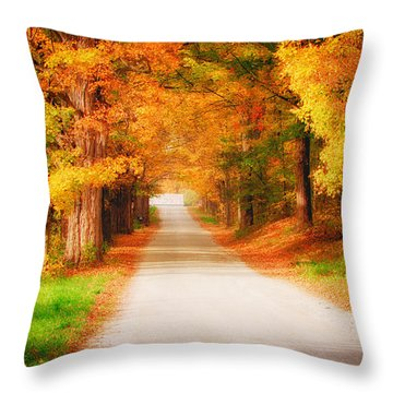 A Walk Along The Golden Path Throw Pillow by Jeff Folger