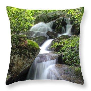 A Walk Along The Jacob Fork Throw Pillow
