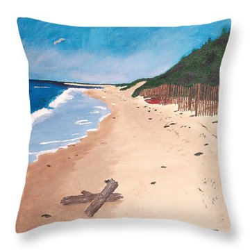 A Walk In Nantucket Throw Pillow by Cynthia Morgan