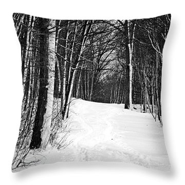 A Walk In Snow Throw Pillow by Joe Faherty