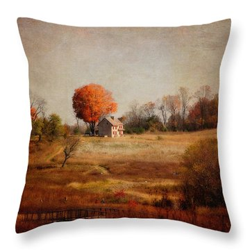 A Walk In The Meadow With Texture Throw Pillow