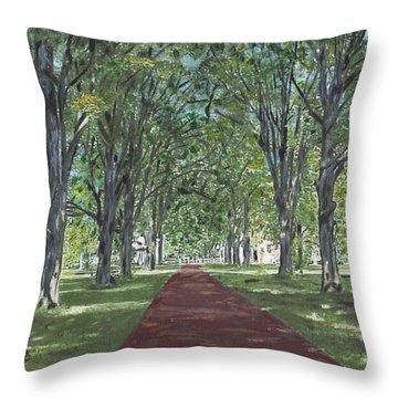 Washington Crossing State Park Throw Pillow