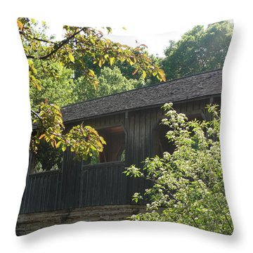 Throw Pillow featuring the photograph A Walk In The Park by Tiffany Erdman