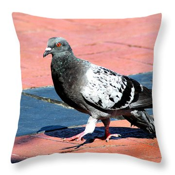 A Walk In The Square Throw Pillow