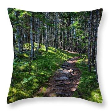 A Walk In The Woods Throw Pillow by John Haldane