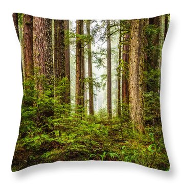 Throw Pillow featuring the photograph A Walk Inthe Forest by Ken Stanback