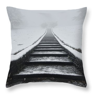 A Walk Into The Fog Throw Pillow by Don Schwartz