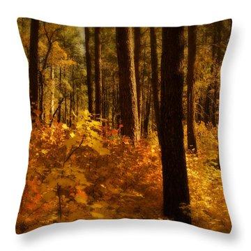 A Walk Through The Woods  Throw Pillow by Saija  Lehtonen