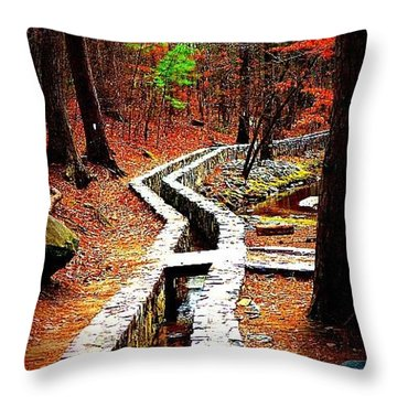 Throw Pillow featuring the photograph A Walk Through The Woods by Tara Potts