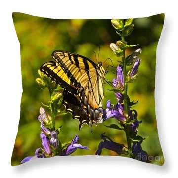 A Warm September Day In The Garden Throw Pillow