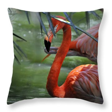 A Watchful Eye Throw Pillow by Kenny Francis