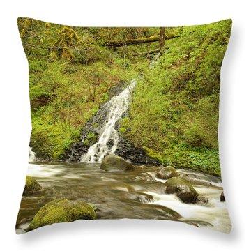 A Waterfall Into Oneida Creek Throw Pillow