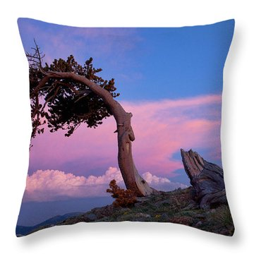 A Westerly Wind Throw Pillow by Jim Garrison