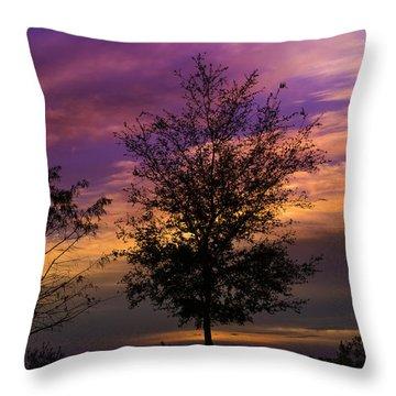 A Whisper In Nature Throw Pillow by Melanie Moraga