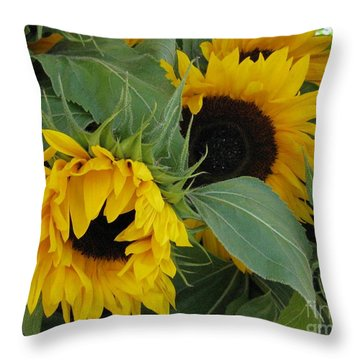 Throw Pillow featuring the photograph A Wink And A Nod by Arlene Carmel
