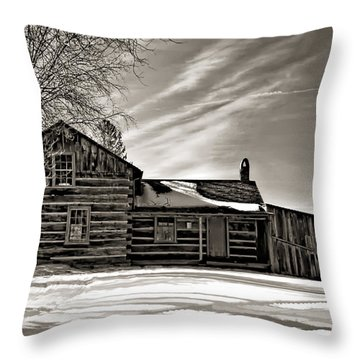 A Winter Dream Monchrome Throw Pillow by Steve Harrington