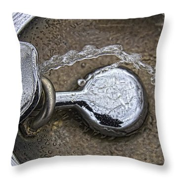 A Winter Drink Of Water Throw Pillow by Daniel Sheldon