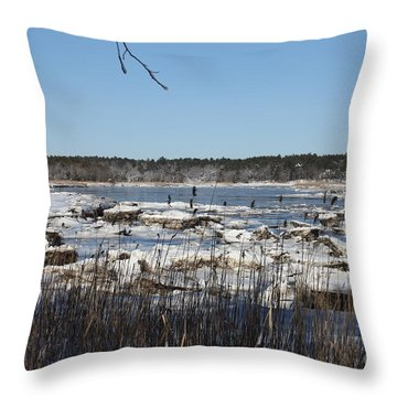 A Winter On The Weweantic River Throw Pillow
