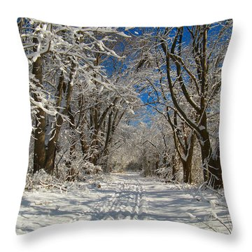 Throw Pillow featuring the photograph A Winter Road by Raymond Salani III
