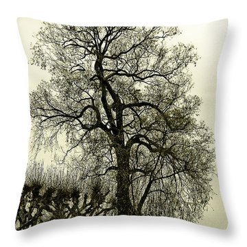 A Winter Touch Throw Pillow by Syed Aqueel