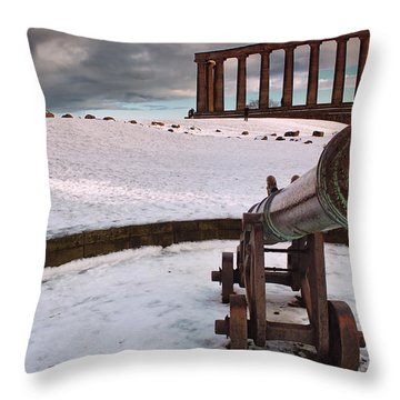 A Winter Tribute Throw Pillow