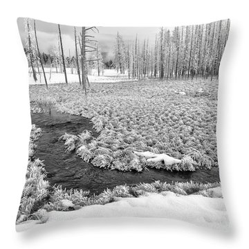 A Winter's Afternoon In Yellowstone Throw Pillow by Sandra Bronstein