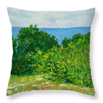A Winter's Day At The Beach Throw Pillow
