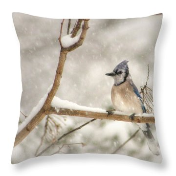 A Winter's Day Throw Pillow by Lori Deiter