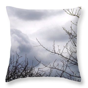 Throw Pillow featuring the photograph A Winter's Day by Robyn King