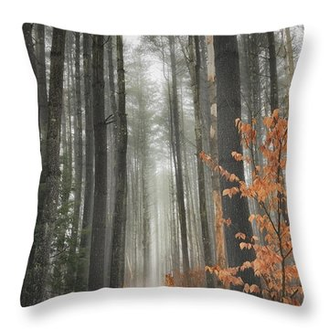 A Winters Path Throw Pillow by Bill Wakeley