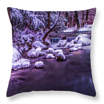 a winter's tale II - hdr Throw Pillow by Hannes Cmarits