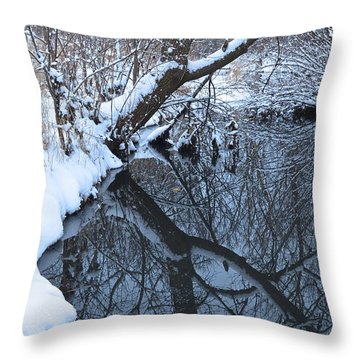 A Wintry Reflection Throw Pillow by Rita Mueller