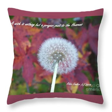 A Wish For You Throw Pillow by Robin Coaker