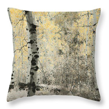 A Wisp Of Gold Throw Pillow by Don Schwartz