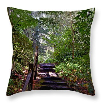 A Wooded Path Throw Pillow
