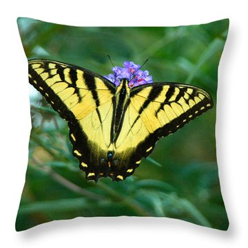 A Yellow Butterfly Throw Pillow by Raymond Salani III