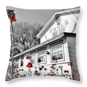 Abandonded Throw Pillow by Lynda Dawson-Youngclaus
