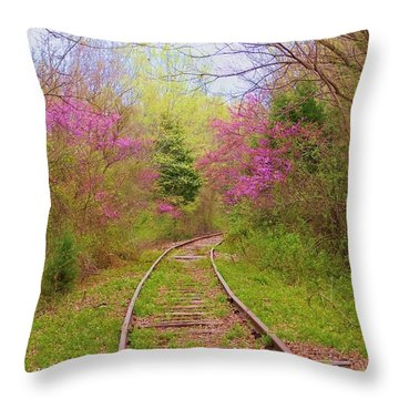 Abandoned #1 Throw Pillow