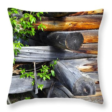 Throw Pillow featuring the photograph Abandoned  by Cathy Mahnke