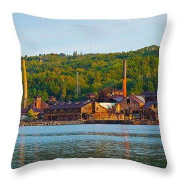 Abandoned Copper Throw Pillow