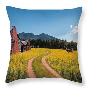 Abandoned Country Life Throw Pillow by Fred Larson