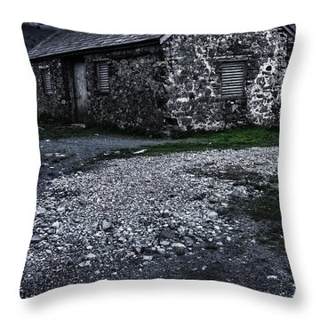 Abandoned Farm Throw Pillow by Svetlana Sewell