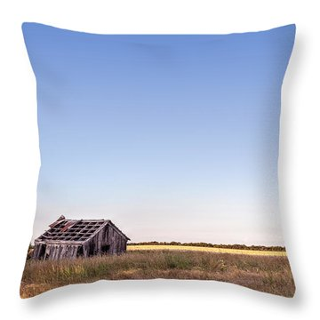 Abandoned Farmhouse In A Field Throw Pillow