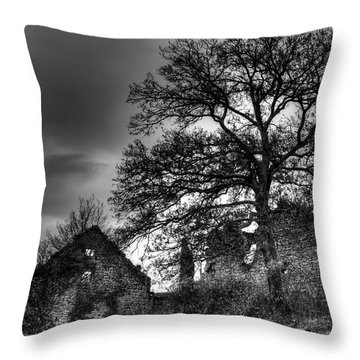 Abandoned Throw Pillow by Ivan Slosar