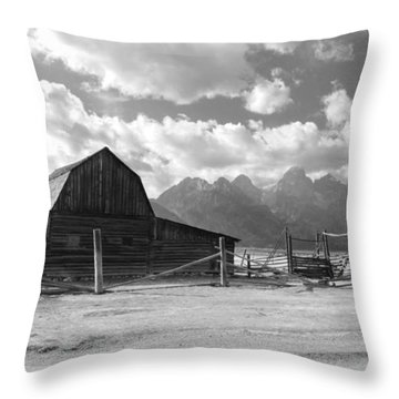 Abandoned Throw Pillow by Kathleen Struckle