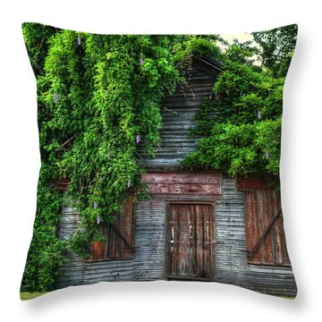 Abandoned Throw Pillow by Kathy Baccari