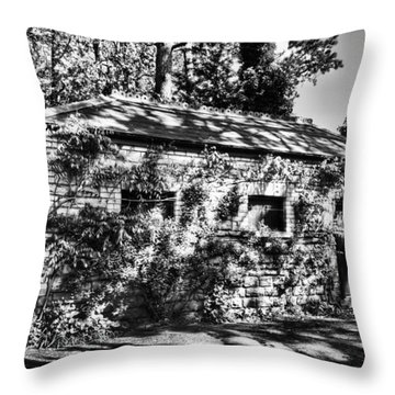 Abandoned Mono Throw Pillow by Steve Purnell