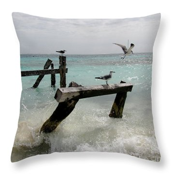Throw Pillow featuring the photograph Abandoned Pier by Sean Griffin