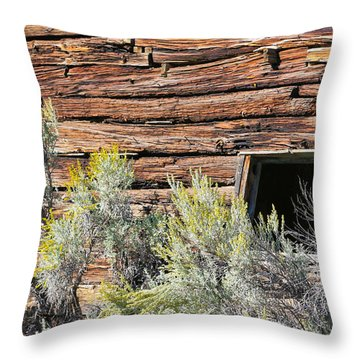 Throw Pillow featuring the photograph Abandoned Shack by Susan Leonard