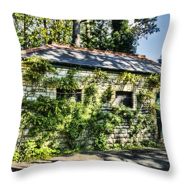 Abandoned Throw Pillow by Steve Purnell